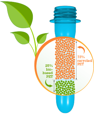 Bio-based PET bioplastics