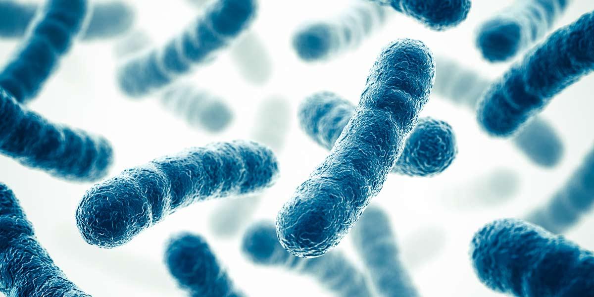 bioplastics from bacteria