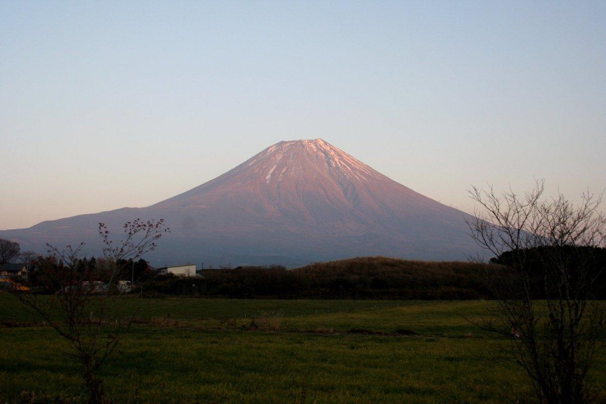 Japanese Companies Expand Bioplastics Production