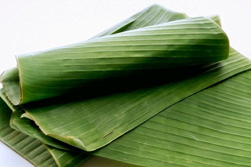 banana leaves bioplastics