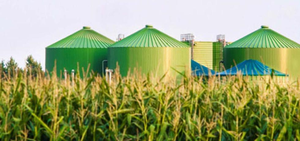 biomass waste furfural
