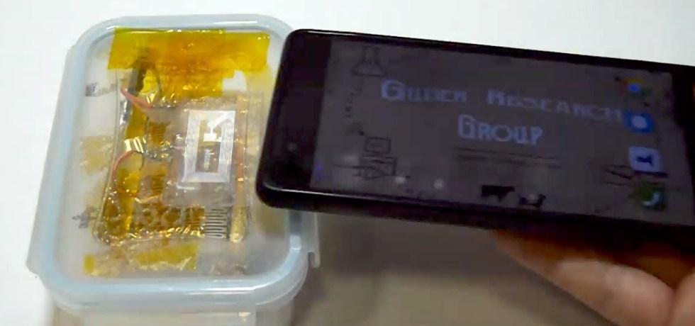 biodegradable sensors control food quality