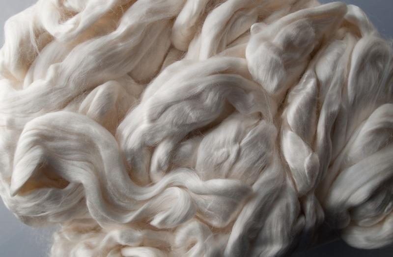 biodegradability cellulosic fibres