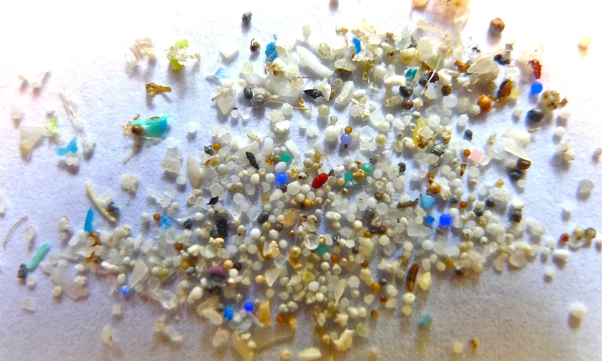 microplastics impact health