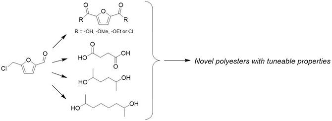 Bio-based polymer