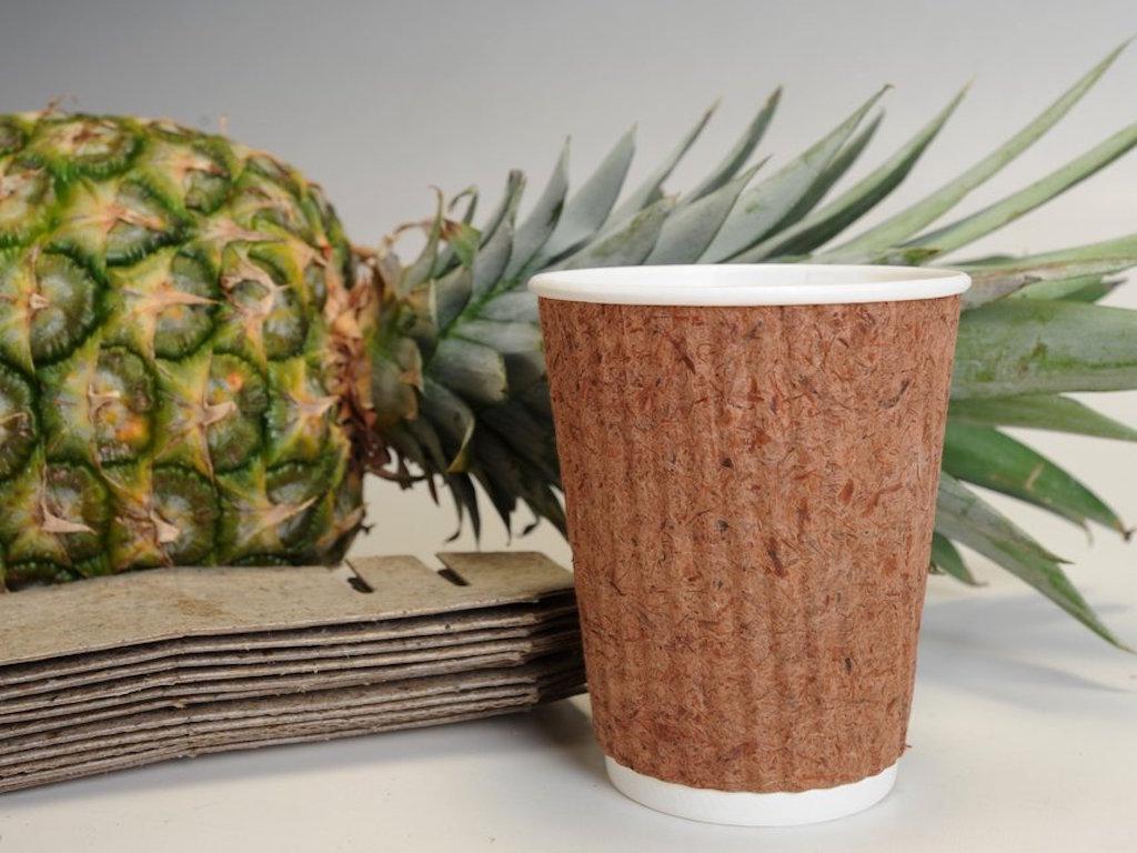 pinyapel paper pineapple leaves