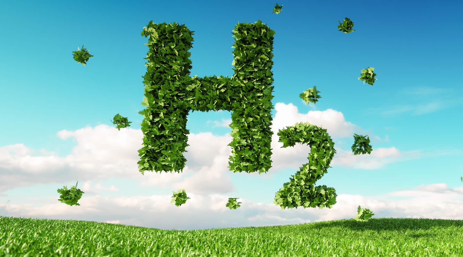 bio hydrogen