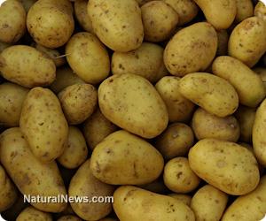 Сок от суров картоф, който може да лекува диабет, анемия и повече. Как да се подготви сока?