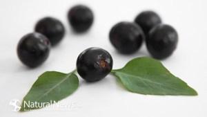 асай-бери-плод