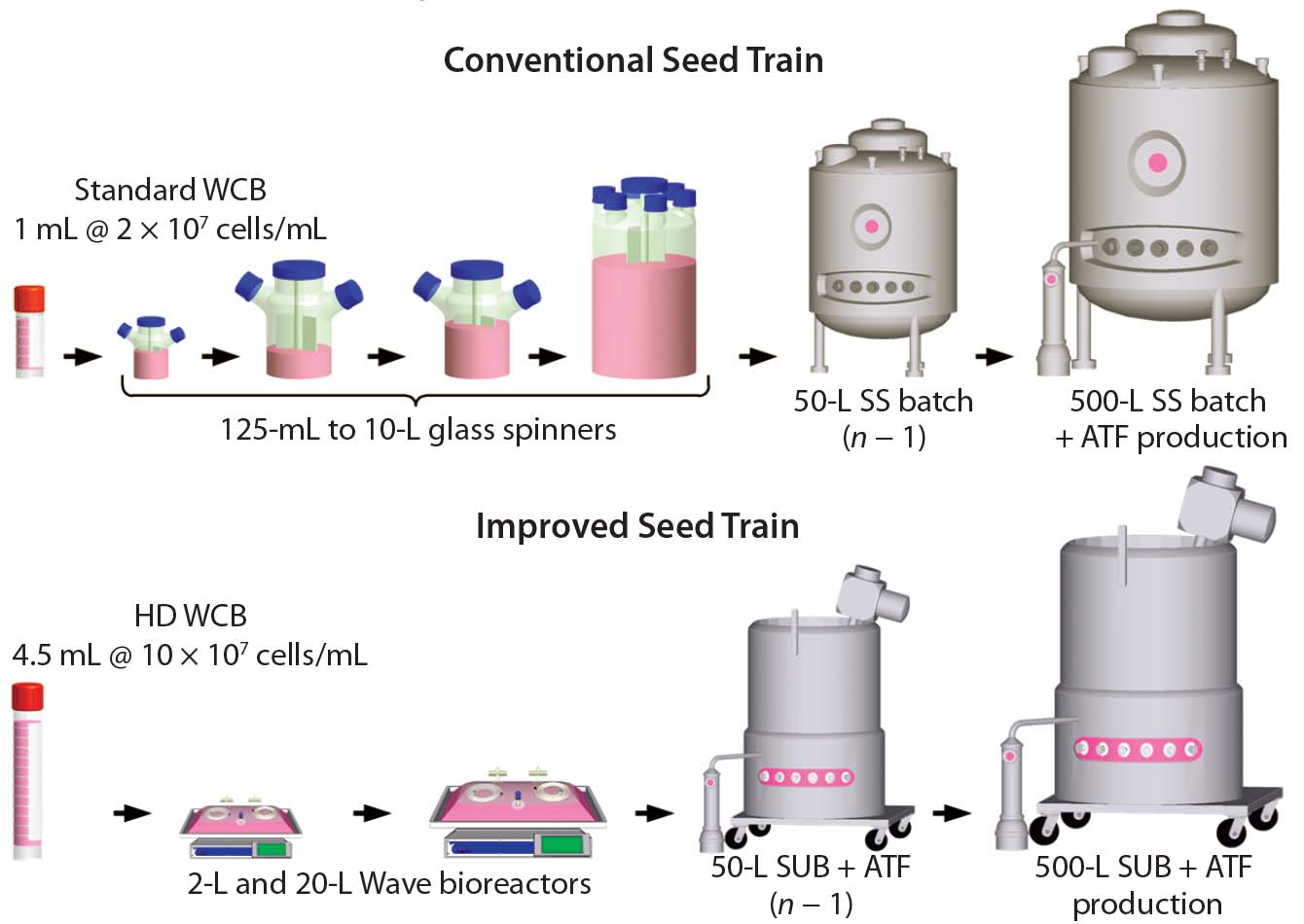 A Novel Seed Train Process Using High Density Cell