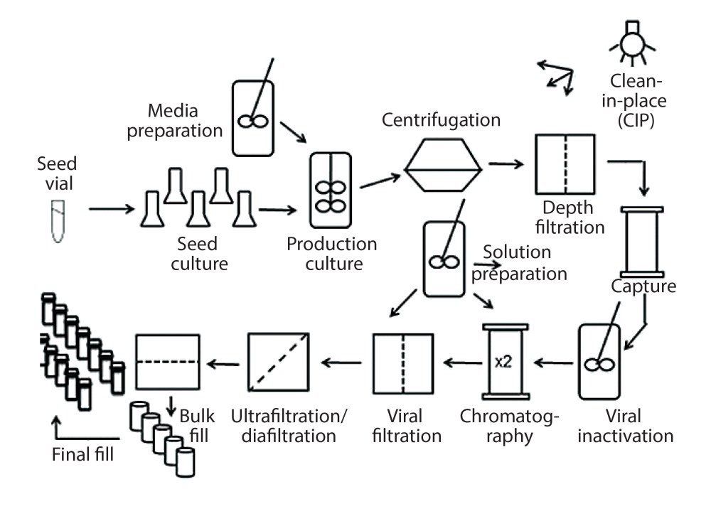 medium resolution of figure 1 process flow diagram for monoclonal antibody production using cho cells this figure