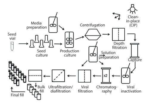 small resolution of figure 1 process flow diagram for monoclonal antibody production using cho cells this figure