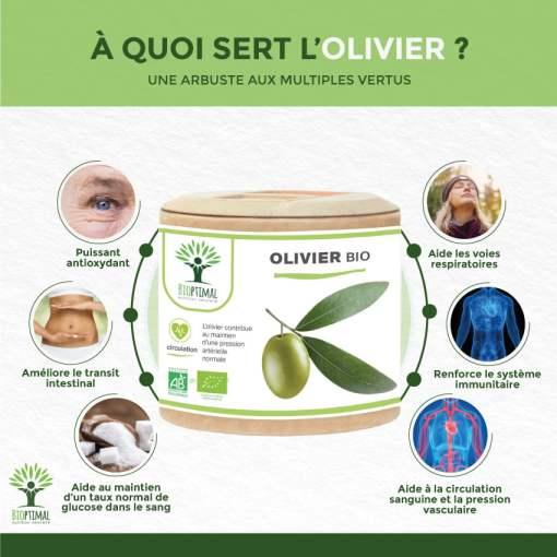 bienfaits Olivier Bio
