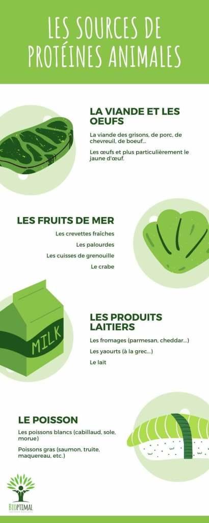 Infographie sur les sources de protéines animales