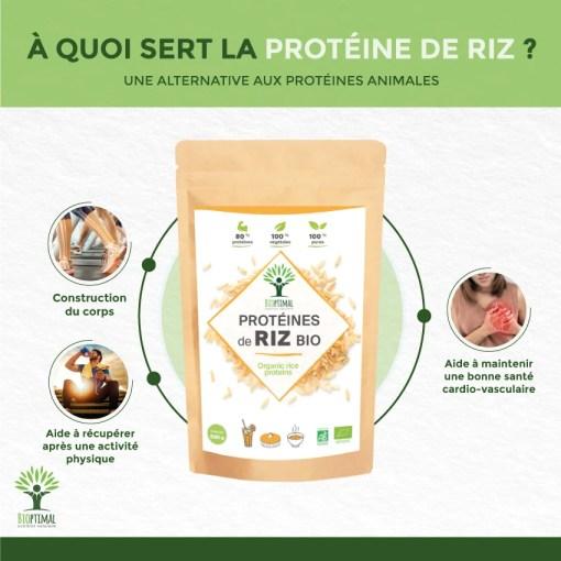 Bienfaits protéine de riz