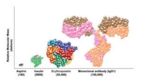 MolecularMass-300x175