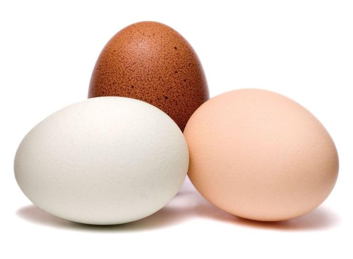 1.187 Taches d'œuf sur du cuir