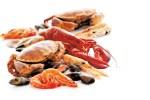 Documents utiles conservation des aliments fruit de mer