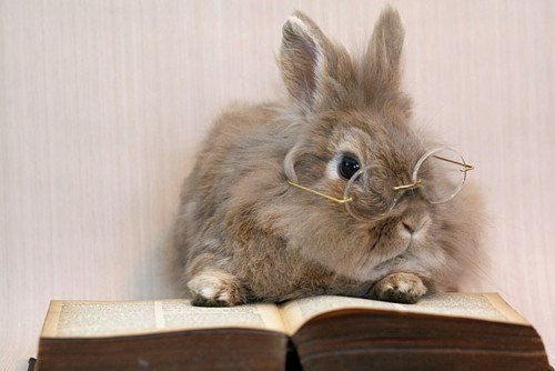 1.1287 Nettoyer des lunettes.jpg