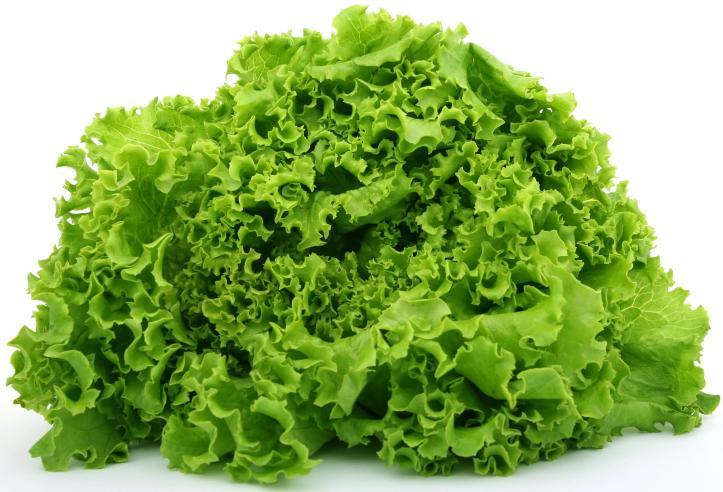 2.43 Sauver une salade flétrie.jpg