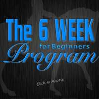 THE 6 WEEK WORKOUT