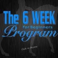BRF:com-thesix-week-program-