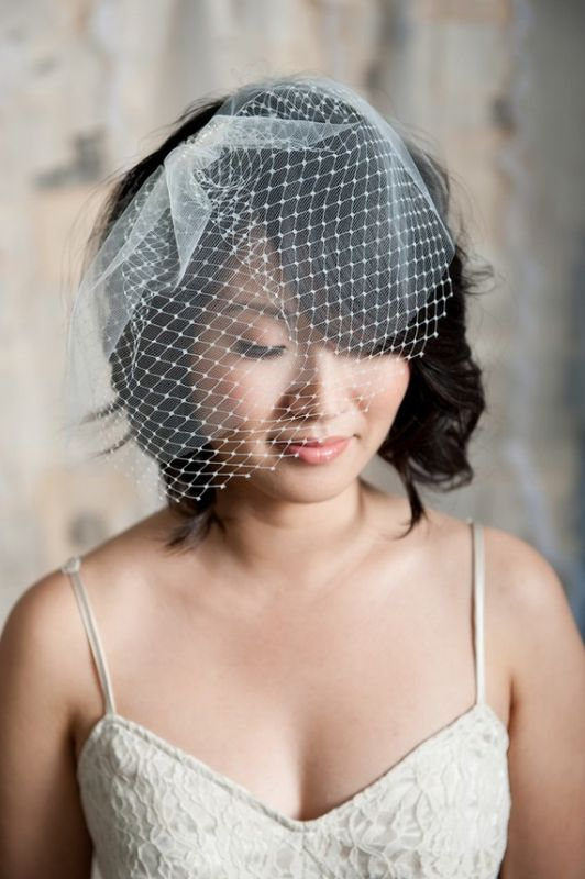 https://i0.wp.com/bios.weddingbee.com/pics/112583/bird_cage_veils.jpg