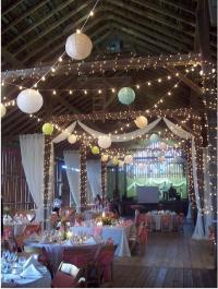 Kandace's blog: orchid centerpiece wedding Wedding