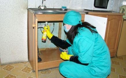 Уничтожение тараканов в общежитии