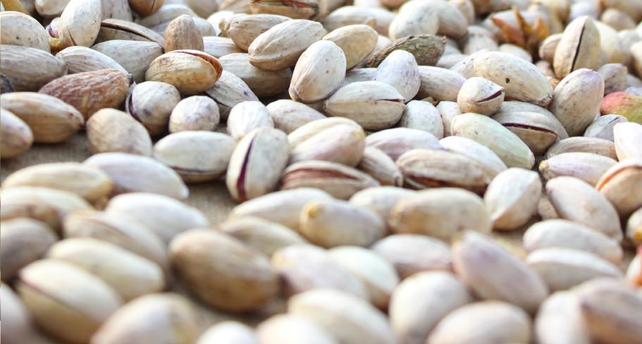 pistacchi di bronte bio in guscio