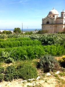giardinidellagrata001