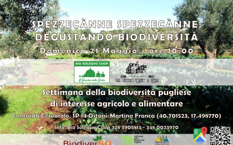 EVENTO: Spezzecànne spezzecànne, degustando biodiversità