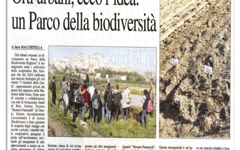 Orti Urbani, ecco l'idea: un Parco della Biodiversità – Nuovo Quotidiano di Puglia