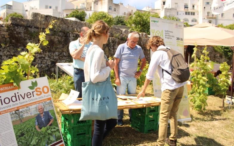Biodiversità, in Puglia una settimana ricca di appuntamenti [AgroNotizie]