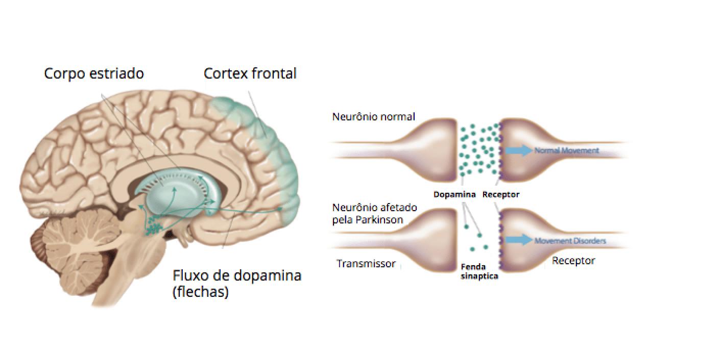 A influência da fase oral no desenvolvimento da personalidade 4
