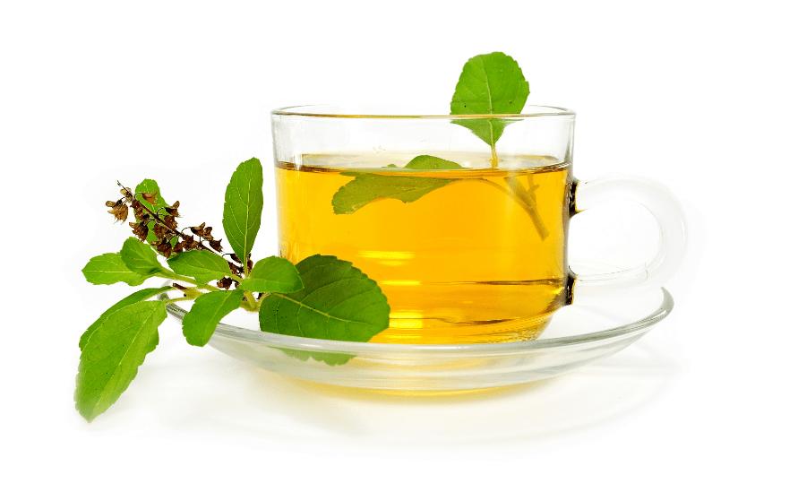 chá de manjericão