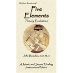 Five Element Theory Evaluation (Digital Download)