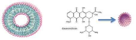 LIPOSOMAL DOXORUBICIN PREPARATION | Target Drug Delivery Systems