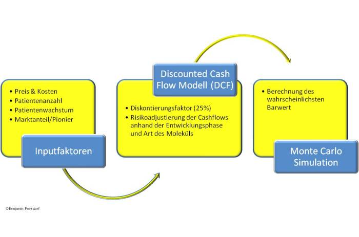 Workflow für die DCF Berechnung