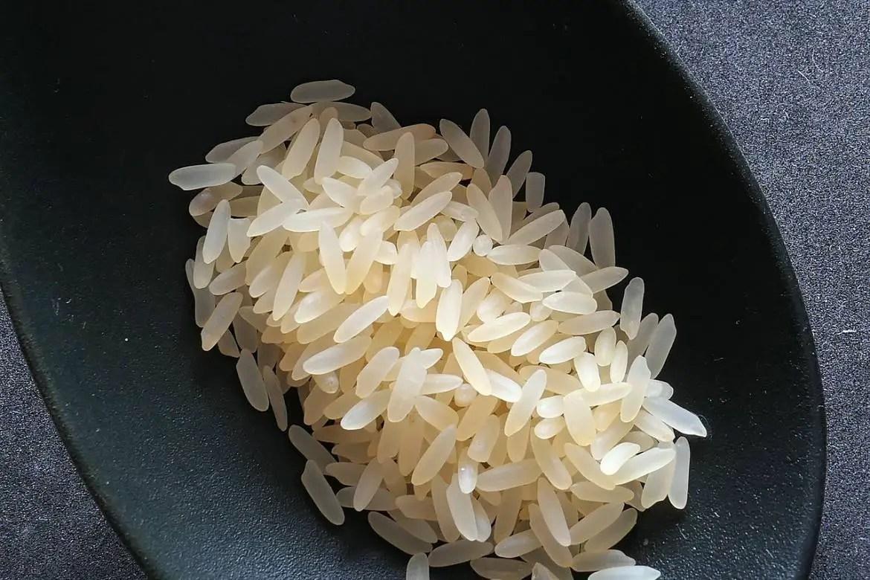 Salt Tolerant Rice