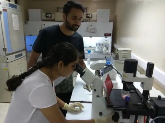 Sriparna Mukherjee, and Irshad Akbar