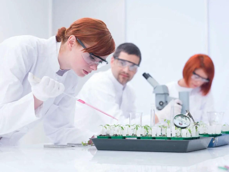 Industrial Biotech Training Programme