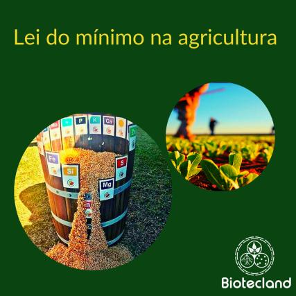 Lei do mínimo na agricultura