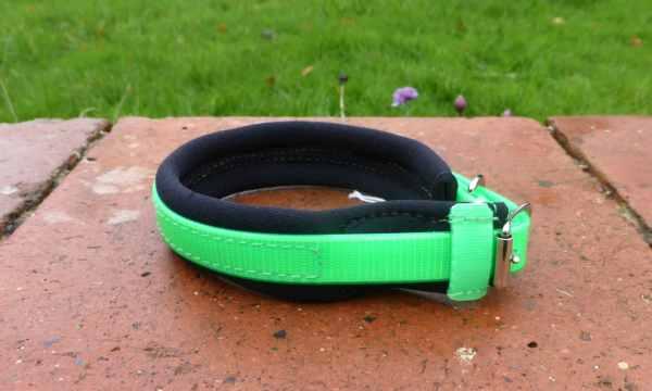Agility Dog Collar - Biothane Collars