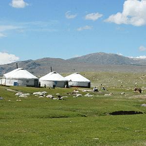 Yurt village Mongolia © Audrius Sutkus (unsplash.com)