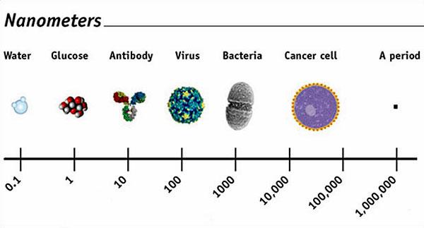 NanoMeter-Scale   Biotoxin Journey