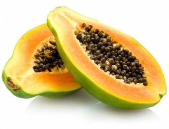 Resultado de imagen para papaya