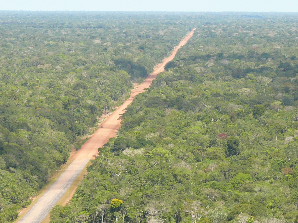 The BR-319 Highway from above (photo by Fernando Figuereido).