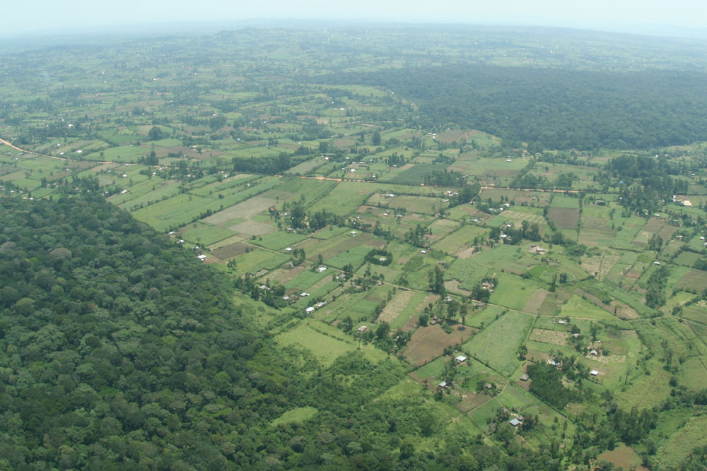 Arial picture showing the northern part of Kakamega Forest as well as Kisere fragment, Photo by Nina Farwig