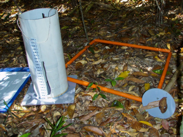 FIg. 1. Litter volume collection in the field, showing volumetric cylinder, quadrat, data sheet and litter compression device, from the method in Parsons, S.A., et al. 2009, Journal of Tropical Ecology, 25, pp. 665-669